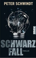 Thumbnail image for Peter Schwindt / Schwarzfall