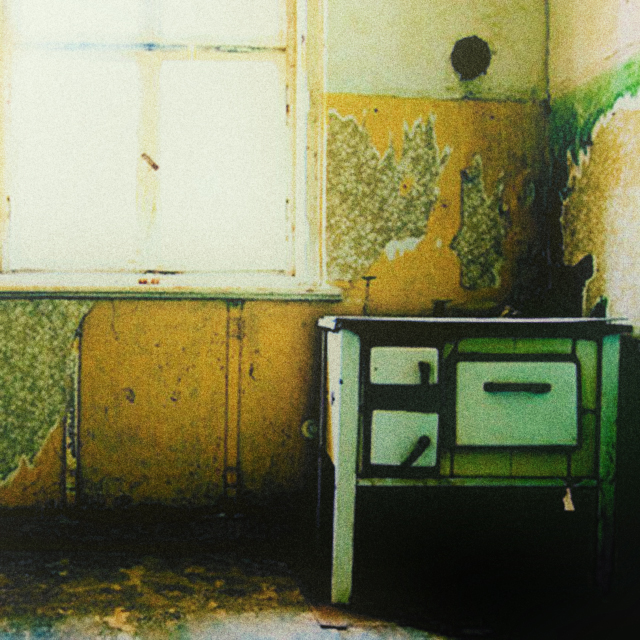 Alfred Goubran / Durch die Zeit in meinem Zimmer