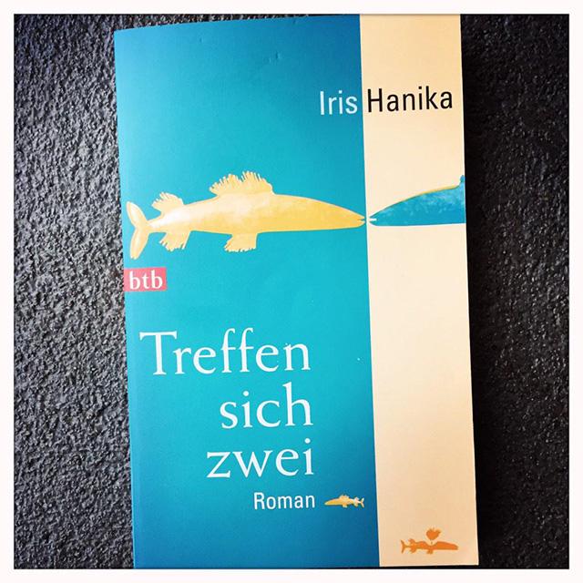 Iris Hanika / Treffen sich zwei