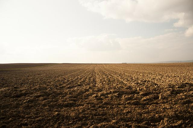 Benedict Wells / Vom Ende der Einsamkeit