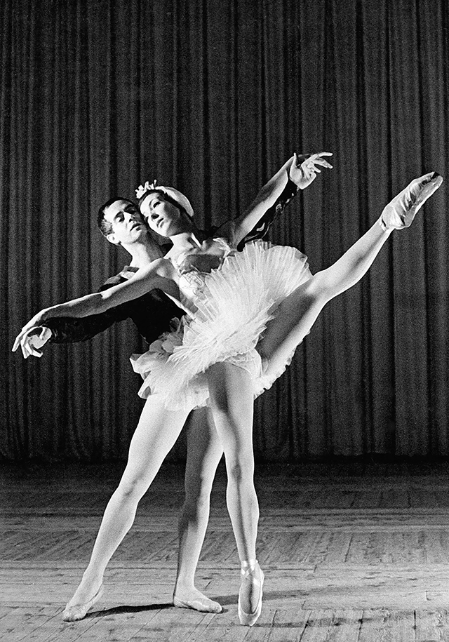 Maggie Shipstead / Dich tanzen zu sehen